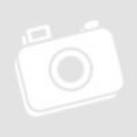Konzol 17 kerek izolátorral, 2,5 méter magas, horganyzott acél
